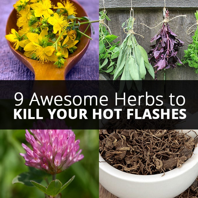 9 Awesome Herbs to Kill Your Hot Flashes