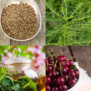 9 Herbal Remedies That Treat Gout Naturally​