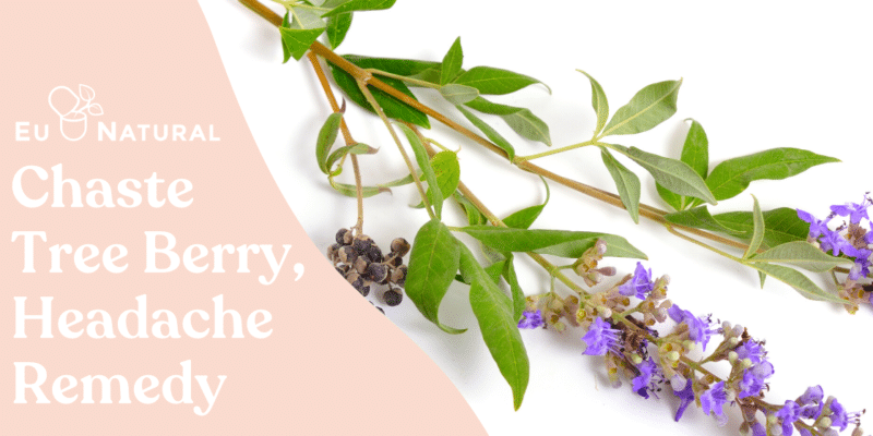 Could Chaste Tree Berry Extract Be the Headache Remedy You've Been Looking For?
