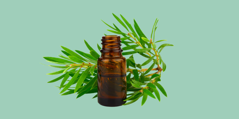 Essential Oils for Urinary Tract Infection - Treatments and Tips