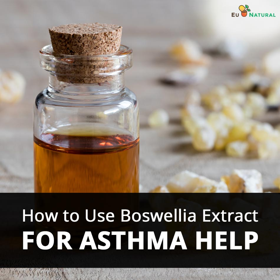 How to Use Boswellia Extract For Asthma Help