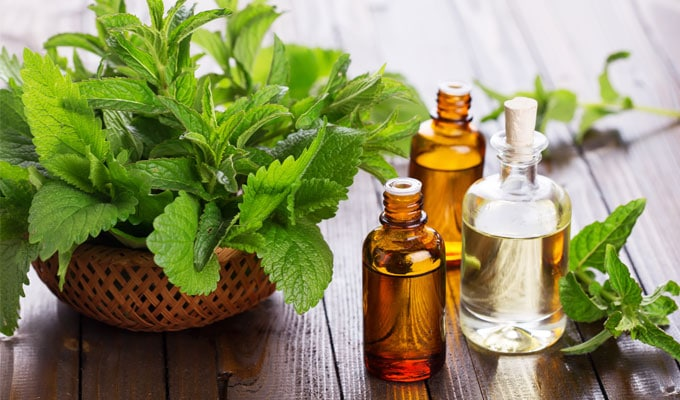 Peppermint Essential Oils Natural Remedies for Pain