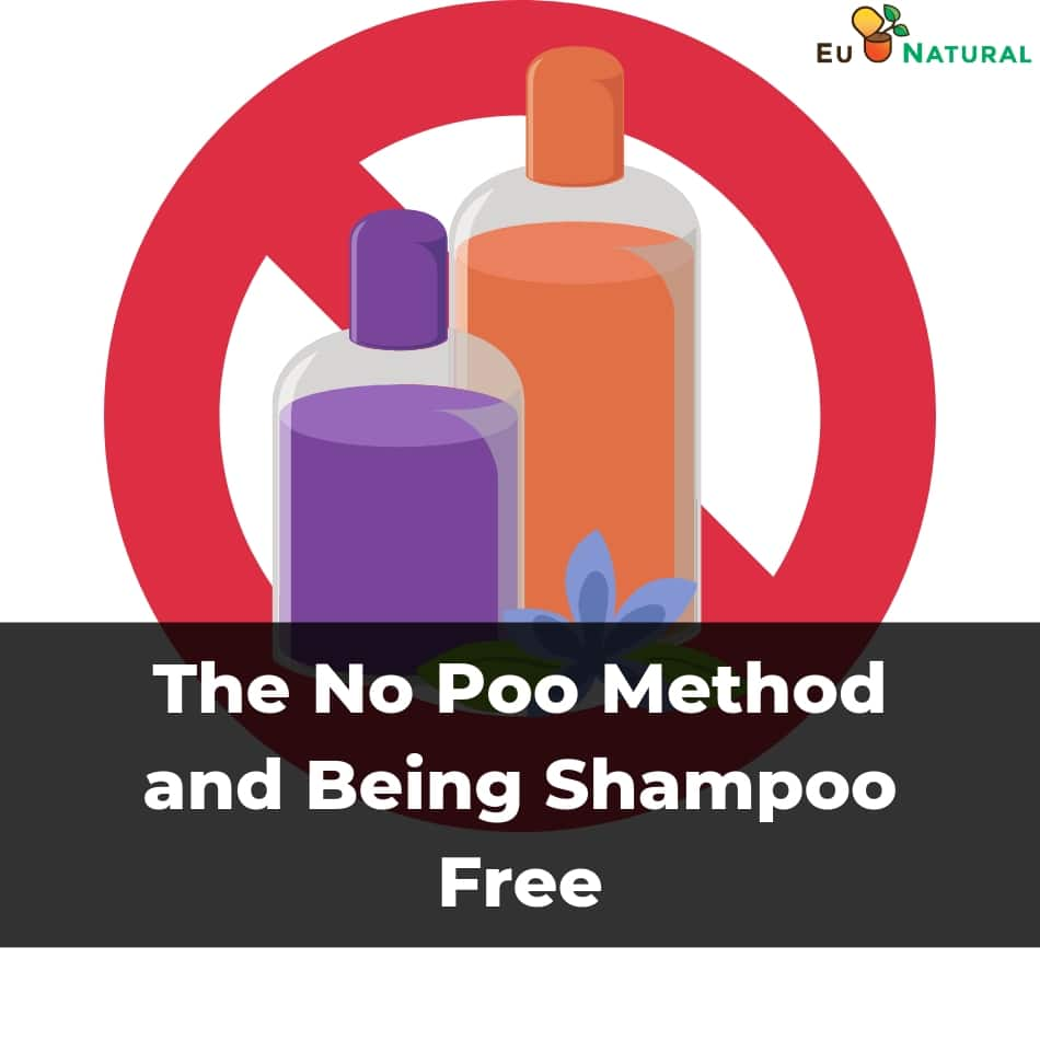 The No Poo Method and Being Shampoo Free