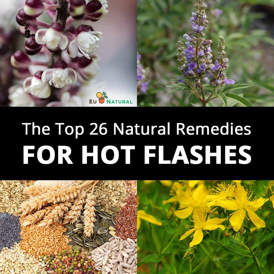 Top 26 Remedies for Hot Flashes watermark